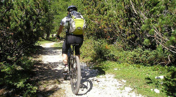En person med cykelryggsäck som cyklar på en skogsväg.