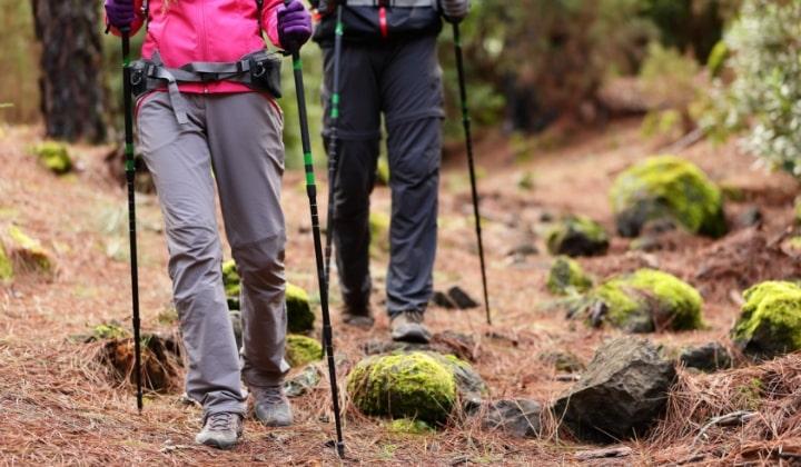 Två personer ute i skogen som vandrar med gåstavar.
