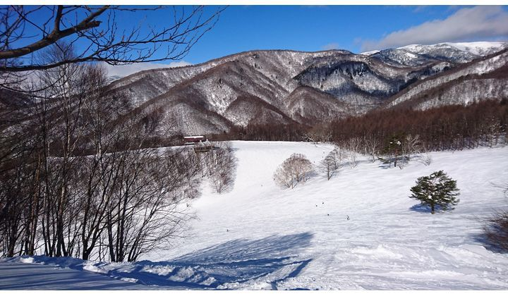 En bild på ett vinterlandskap med pister.