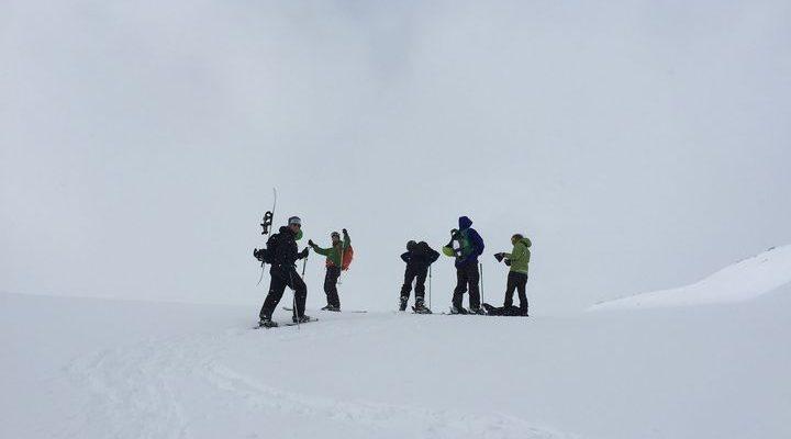 Flera personer på ett snötäckt berg med topptursskidor.
