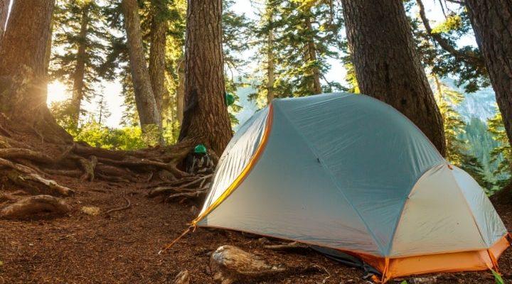 Ett vindskydd/tält som står uppställt i skogen.